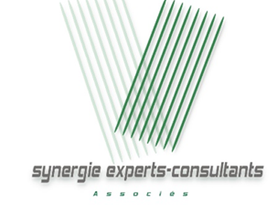 Synergie Experts Consultants